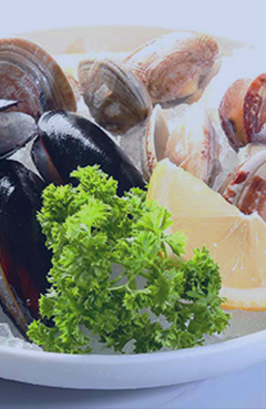 Global Oceanlink - Live, Fresh, Frozen Seafood Supplier in
